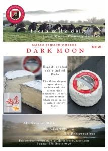Dark Moon Postcard | tanyaseibold.com